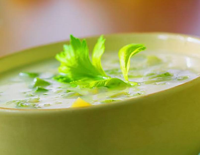 Диетический Суп Для Похудения Сельдереем. Суп из сельдерея для похудения